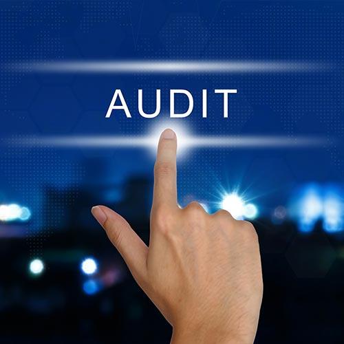 DOL audit art